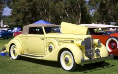 1935 Packard 1207 Convertible Coupe with top up - yellow - fvr