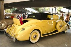 1935 Packard 1207 Convertible Coupe Roadster - yellow - rvr