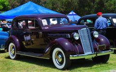 1936 Packard 120 JR - maroon - fvr