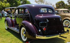 1936 Packard 120 JR - maroon - rvl