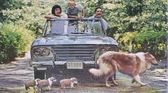 One of the two images from a 1964 Studebaker magazine ad with collies