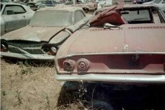 Dead Corvairs