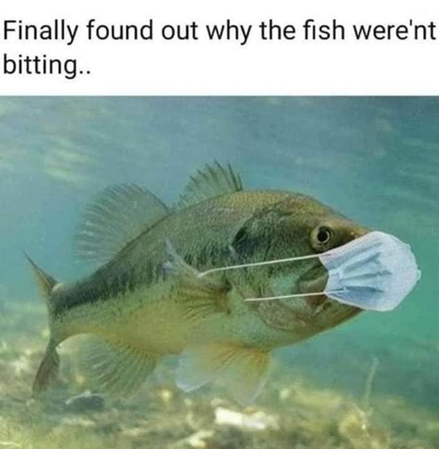 Fish Not Biting.png
