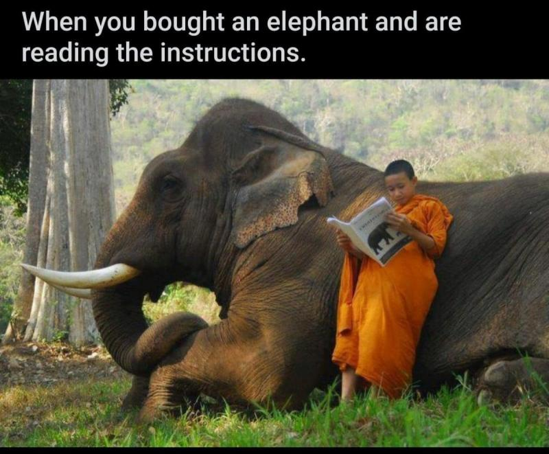 elephant-instructions.jpg