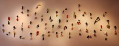 installation view - Botanical Duets
