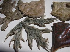 Stoneware Leaves