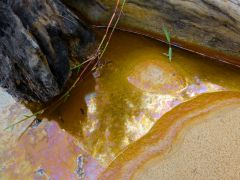Golden Reflection on Metallic Mineral Water