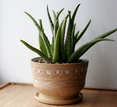 Stoneware planter with white mishima wax resist decoration
