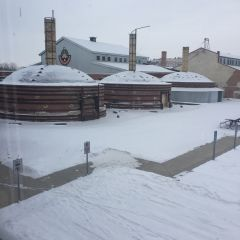 The view from the library at Medalta. It's -20C, and Terri and I are waiting indoors for the kiln to climb.