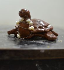 Turtley fun  by student!