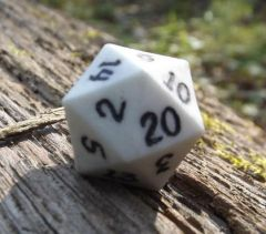 White with Black D20