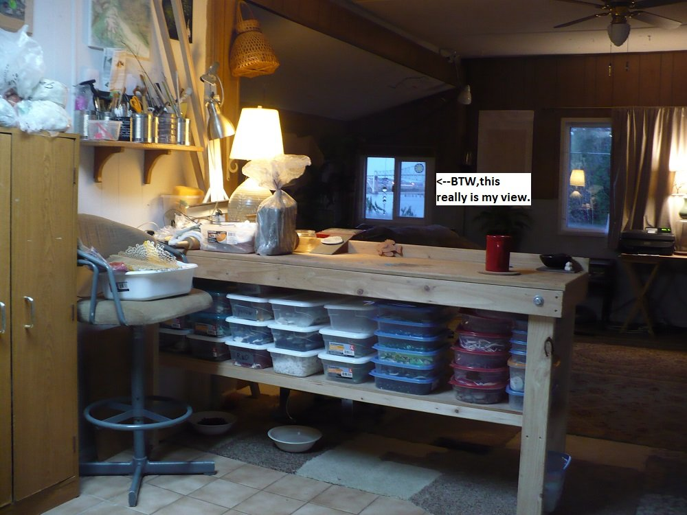 My kitchen studio.jpg