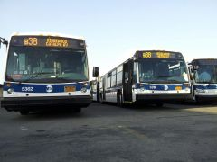 Nova Bus LFS Articulated(s) Both Signed Up As The B38