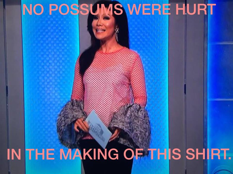No Possums Hurt.jpg