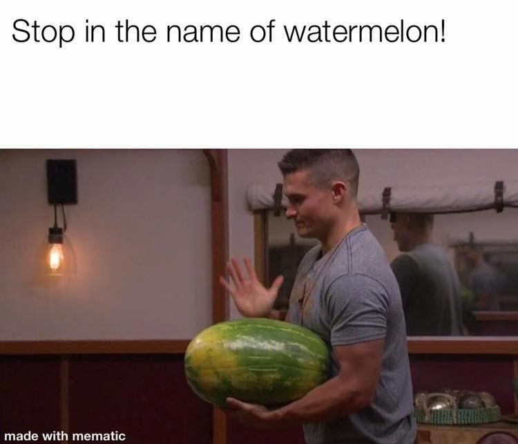 In the Name of Watermelon.jpg