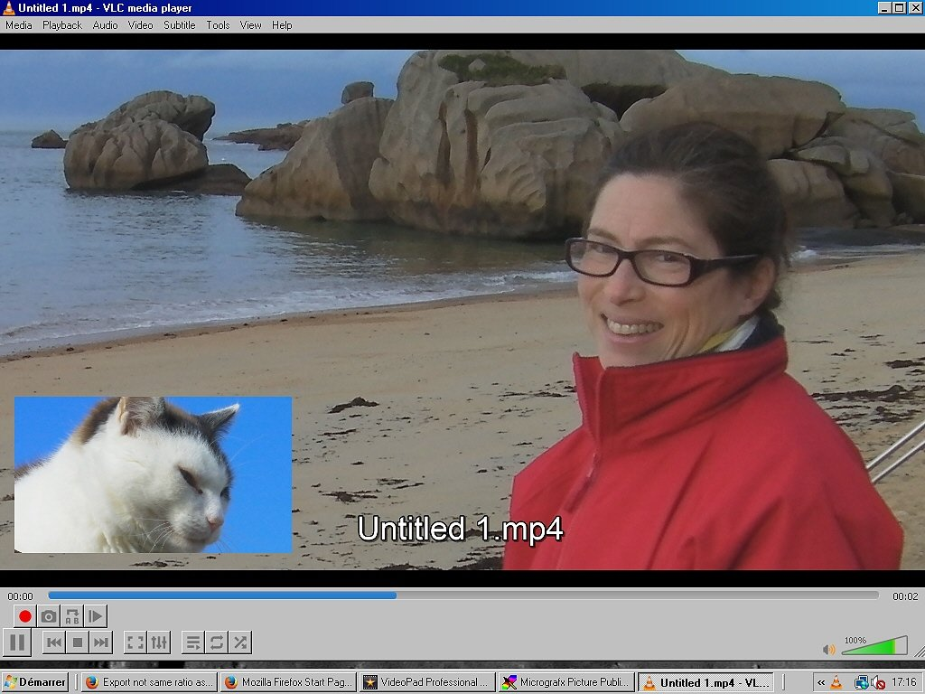 Export not same ratio as preview - VideoPad - NCH Software User