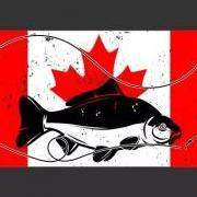 CanadianCarper
