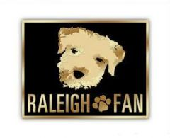 Raleigh Fan Pin