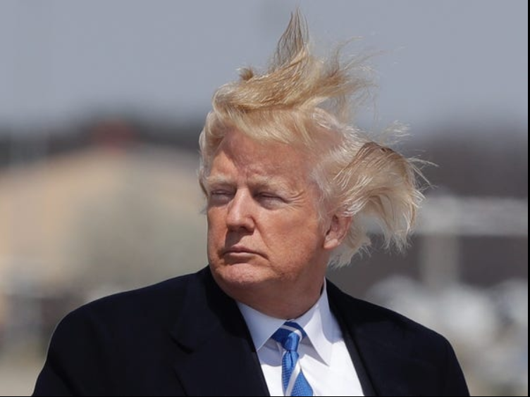TrumpHair01.png