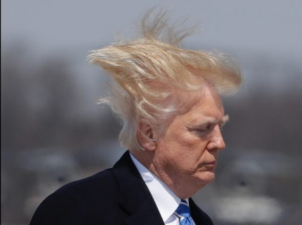 TrumpHair01b.png