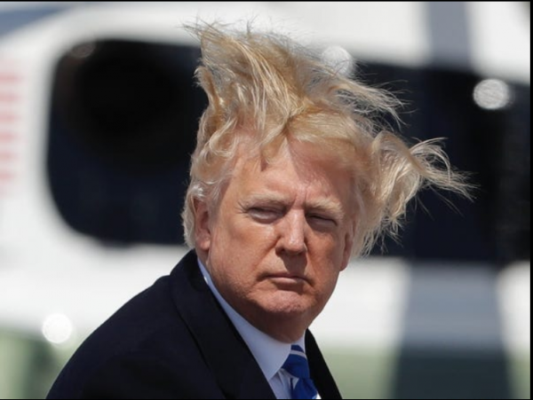 TrumpHair01c.png