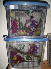 tupperware enclosure idea