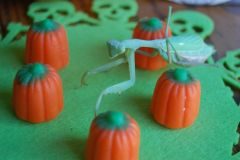 Candy pumpkin patch