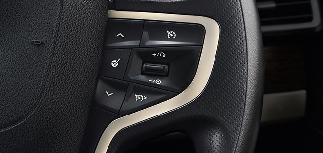 Steering-Wheel-with-Controls.jpg