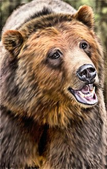 oBear2 (Lighter Brown with partially open smiling mouth)