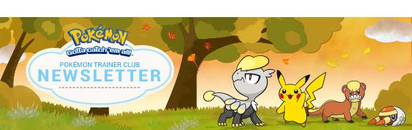 November Newsletter is here! New Pokémon 3DS releases, TCG