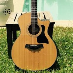 Martin (H)D28 or Taylor 810(CE): which is more versatile